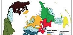 PORTUS-37-COMPASS-DUCRUET-MORETTI-promotion-Transhipment regions